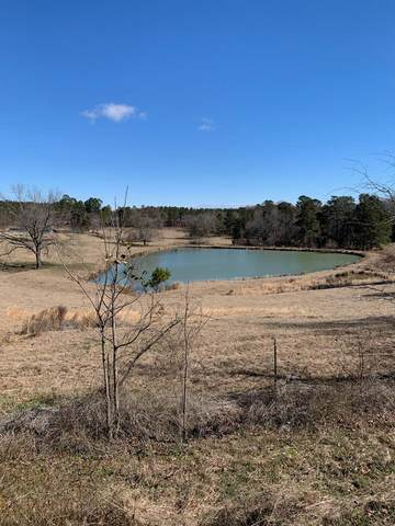 0 County  Line Road, Gibson, GA 30810 (MLS #465369) :: Better Homes and Gardens Real Estate Executive Partners