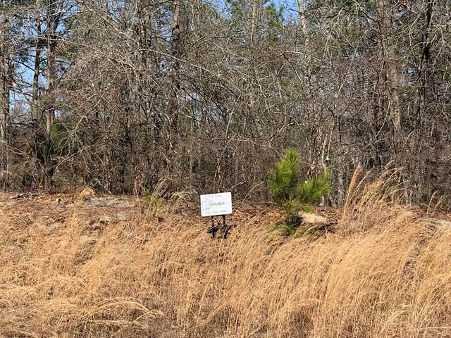 4396 Creek View Drive, Hephzibah, GA 30815 (MLS #466425) :: Shaw & Scelsi Partners