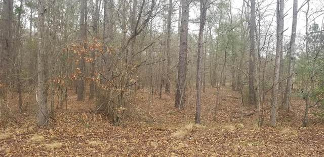 0 Mitchener Road Ext, Dearing, GA 30808 (MLS #466471) :: Melton Realty Partners