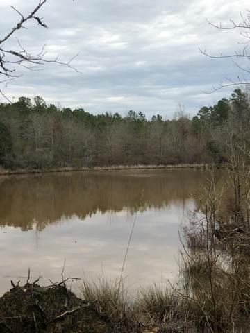 265 Lost Pond Lane, Appling, GA 30802 (MLS #466886) :: McArthur & Barnes Partners | Meybohm Real Estate