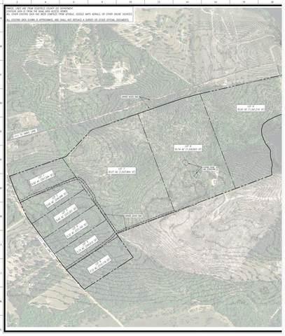 0 Sable Lane, Trenton, SC 29847 (MLS #466922) :: McArthur & Barnes Partners | Meybohm Real Estate