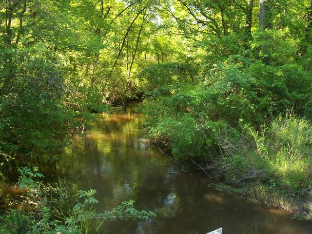 0 Reynolds Pond Road, Aiken, SC 29805 (MLS #467096) :: RE/MAX River Realty