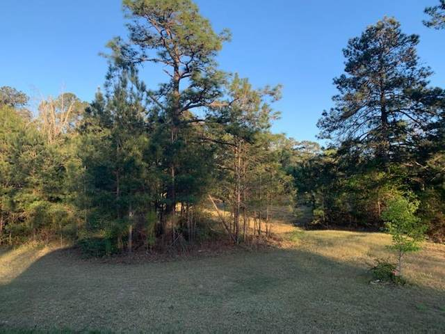 TBD Louisville Road, Harlem, GA 30814 (MLS #468062) :: McArthur & Barnes Partners | Meybohm Real Estate