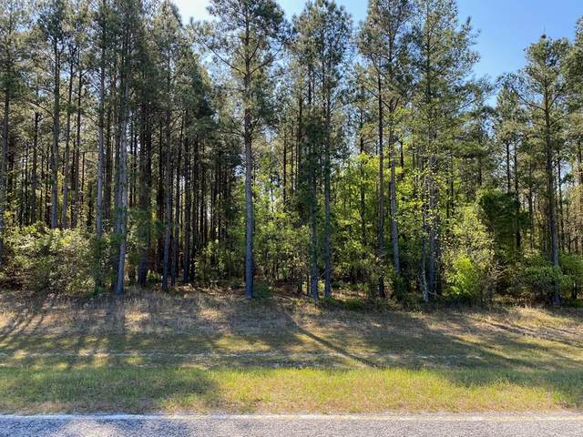000 Barford Road, Gibson, GA 30810 (MLS #468479) :: Better Homes and Gardens Real Estate Executive Partners