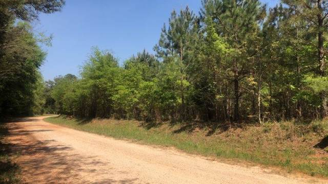 0000 Smith Chapel Road, Lincolnton, GA 30817 (MLS #468487) :: Young & Partners