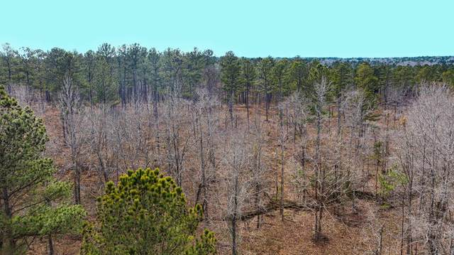 000 Huber Clay Road, Burnettown, SC 29851 (MLS #468683) :: Rose Evans Real Estate