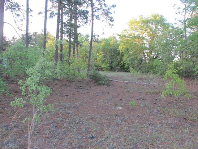 2063 Greenland Road, Blythe, GA 30805 (MLS #469047) :: Better Homes and Gardens Real Estate Executive Partners