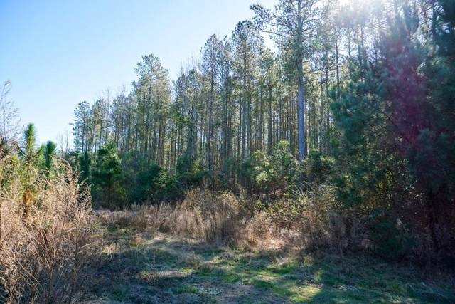 0 Wagontong Road, Wagener, SC 29164 (MLS #469595) :: Better Homes and Gardens Real Estate Executive Partners