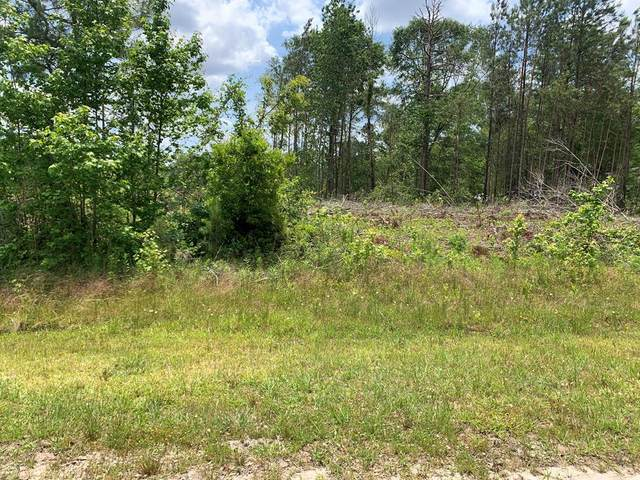 Lot 48 Greenhill Drive, Sardis, GA 30456 (MLS #470108) :: Rose Evans Real Estate