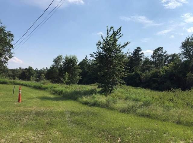 1412 Hephzibah Mcbean Road, Hephzibah, GA 30815 (MLS #470963) :: REMAX Reinvented | Natalie Poteete Team