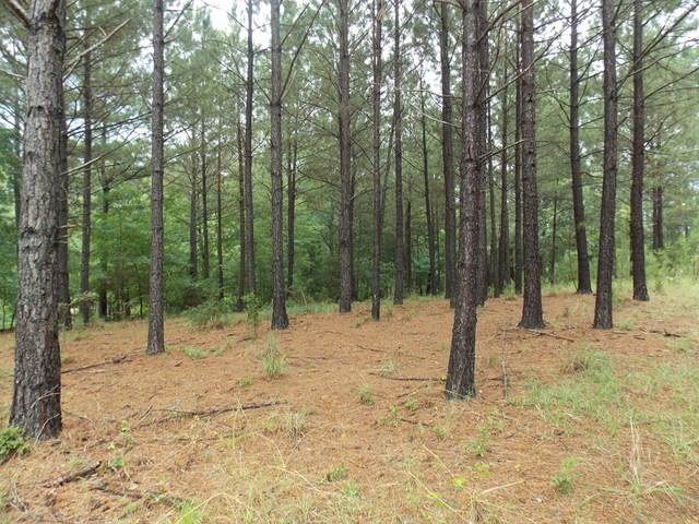 00 Indian Road, Lincolnton, GA 30817 (MLS #471021) :: Young & Partners