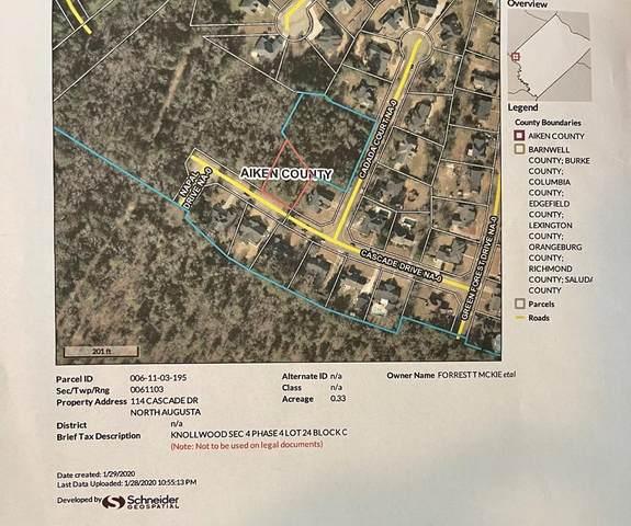 114 Cascade Drive, North Augusta, SC 29841 (MLS #471801) :: The Starnes Group LLC