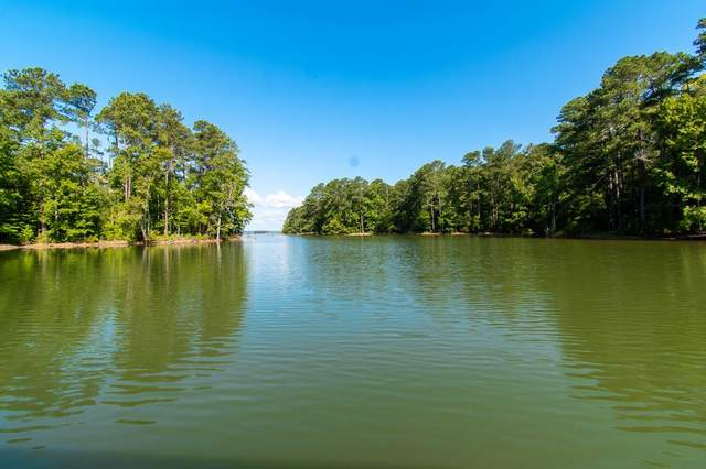 0 Reese Baqui Road, Modoc, SC 29838 (MLS #472793) :: Better Homes and Gardens Real Estate Executive Partners