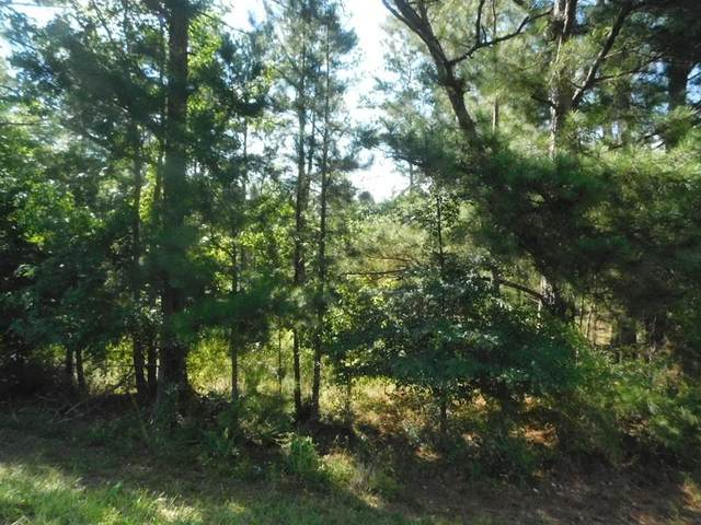 3587 Chamberlain Ferry Road, Lincolnton, GA 30817 (MLS #473004) :: Better Homes and Gardens Real Estate Executive Partners