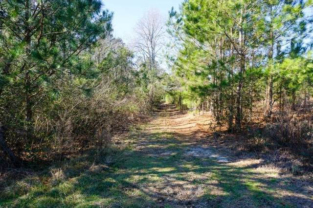 0 Wagontong Road, Wagener, SC 29164 (MLS #473328) :: Rose Evans Real Estate