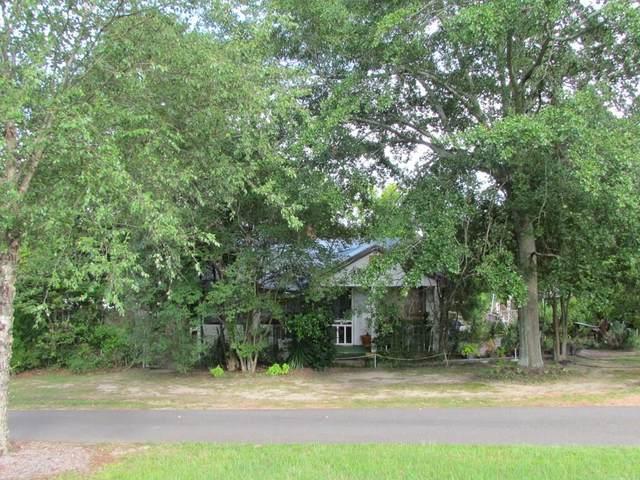 1687 Knox Avenue, North Augusta, SC 29841 (MLS #473575) :: RE/MAX River Realty