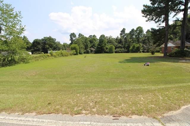 928 Hephzibah Mcbean Road, Hephzibah, GA 30815 (MLS #473910) :: Tonda Booker Real Estate Sales