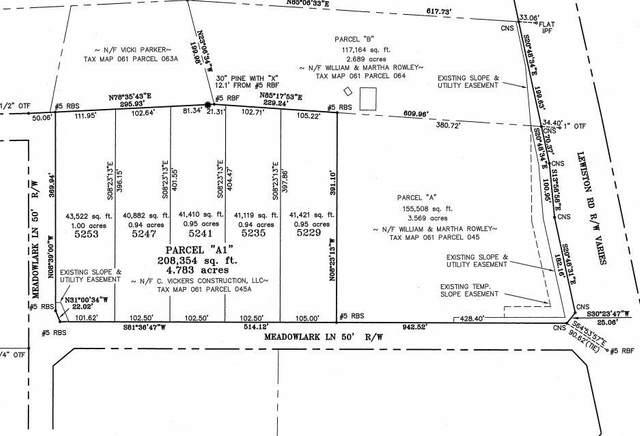 5241 Meadow Lark Lane, Grovetown, GA 30813 (MLS #474509) :: For Sale By Joe | Meybohm Real Estate