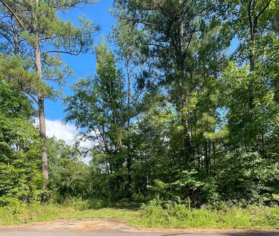 241 Deer Springs Road, Clarks Hill, SC 29821 (MLS #474592) :: Tonda Booker Real Estate Sales