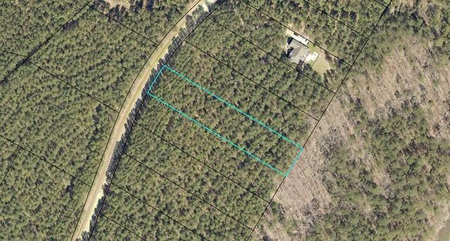 Lot 26 Petersburg Trace, Lincolnton, GA 30817 (MLS #475710) :: For Sale By Joe | Meybohm Real Estate