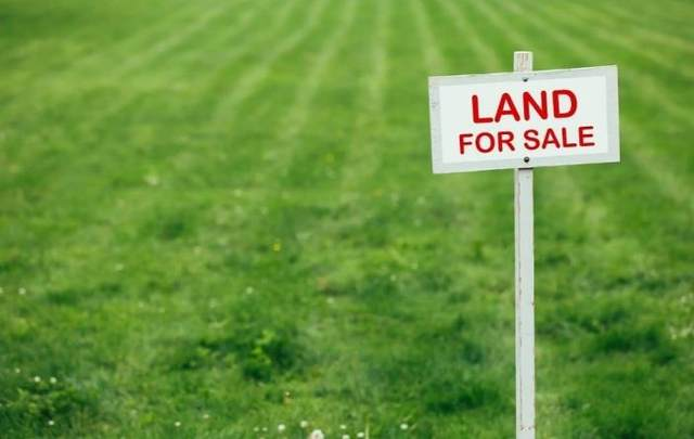 4358 Creek View Drive, Hephzibah, GA 30815 (MLS #475913) :: Tonda Booker Real Estate Sales