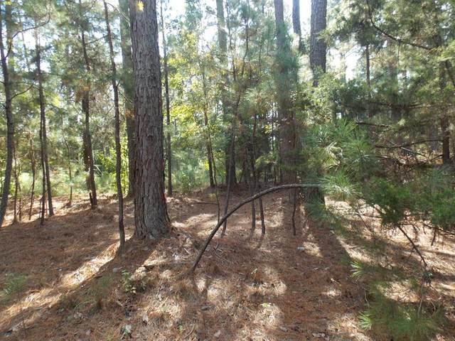 25 Sadie Lane, Lincolnton, GA 30817 (MLS #476524) :: For Sale By Joe | Meybohm Real Estate