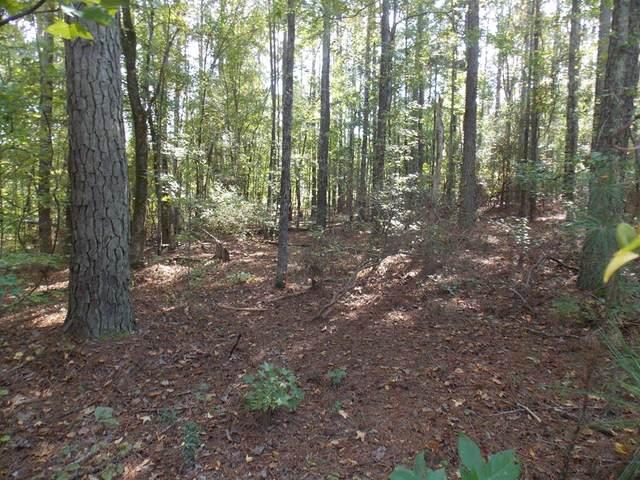 2 Sadie Lane, Lincolnton, GA 30817 (MLS #476525) :: For Sale By Joe | Meybohm Real Estate