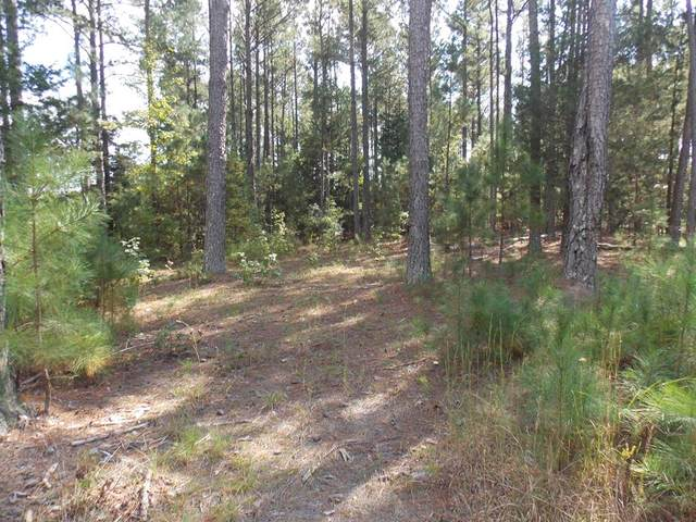3 Sadie Lane, Lincolnton, GA 30817 (MLS #476527) :: For Sale By Joe | Meybohm Real Estate