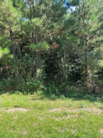 1391 Waterson Drive, Evans, GA 30809 (MLS #476696) :: Tonda Booker Real Estate Sales