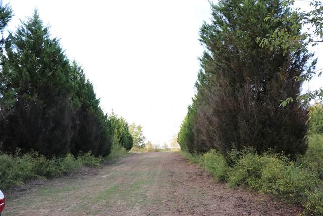 218 Bradley Drive, Waynesboro, GA 30830 (MLS #477033) :: Tonda Booker Real Estate Sales
