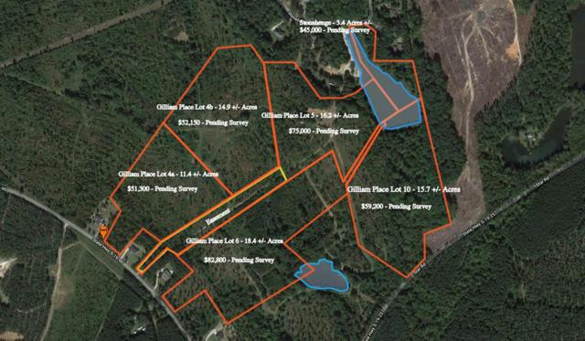 537 LO Youngblood Road, Edgefield, SC 29824 (MLS #423688) :: Meybohm Real Estate