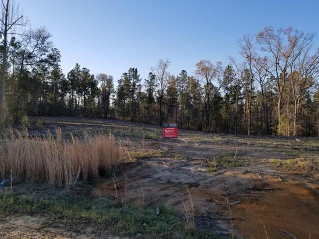 3516 Dry Creek Road, Hephzibah, GA 30815 (MLS #424266) :: REMAX Reinvented | Natalie Poteete Team
