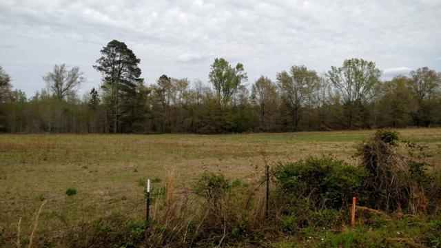 Lot 4 Temple Road, Thomson, GA 30824 (MLS #425321) :: Melton Realty Partners