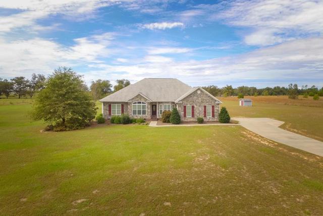 1579 Sylvan Grove Road, Stapleton, GA 30823 (MLS #433458) :: Young & Partners