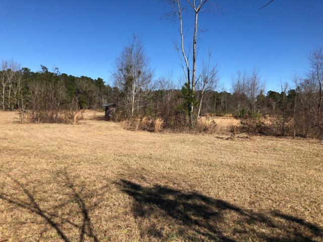 0 Lazy Acres Drive, Hephzibah, GA 30815 (MLS #436024) :: Young & Partners