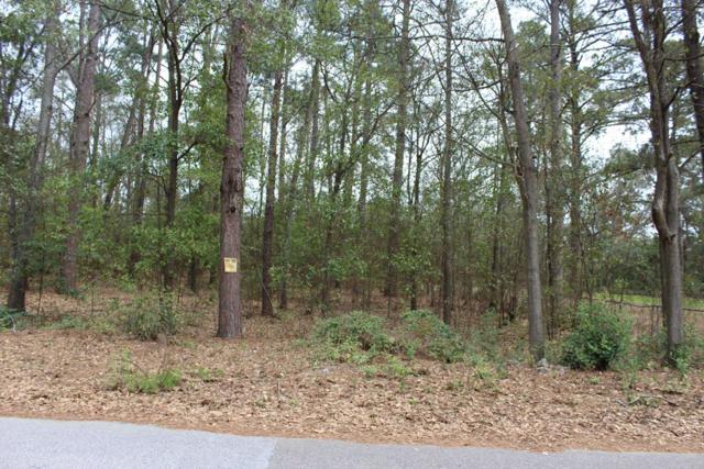 2116 Veterans Drive, Augusta, GA 30909 (MLS #438399) :: Melton Realty Partners