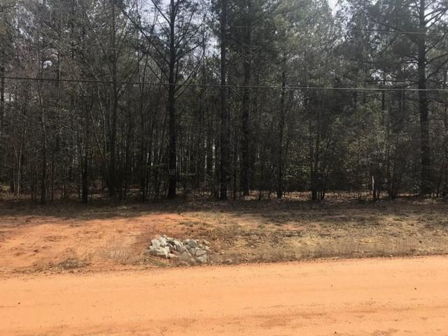 Lot 50 Stapleton Acres Drive, Stapleton, GA 30823 (MLS #438732) :: REMAX Reinvented | Natalie Poteete Team
