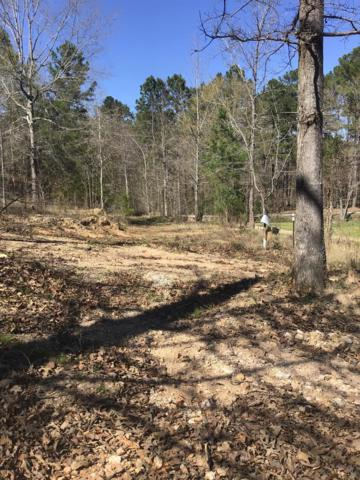 Lot 42 Panama Court, Lincolnton, GA 30817 (MLS #438944) :: Young & Partners