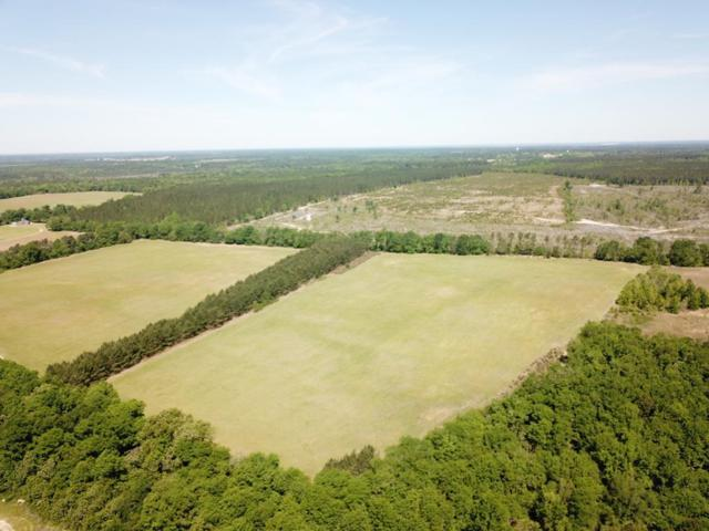 TBD South Dixie Road, Wagener, SC 29164 (MLS #439615) :: Southeastern Residential