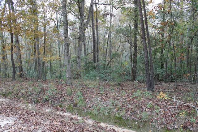 0 Lakeview Drive, Grovetown, GA 30813 (MLS #441935) :: REMAX Reinvented | Natalie Poteete Team