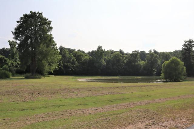 236 Rivers Run, Waynesboro, GA 30830 (MLS #442079) :: The Starnes Group LLC