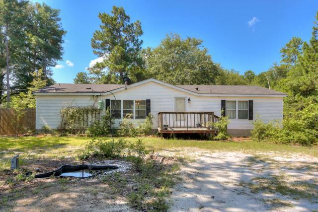 5882 Jaime Drive, Grovetown, GA 30813 (MLS #444409) :: Young & Partners