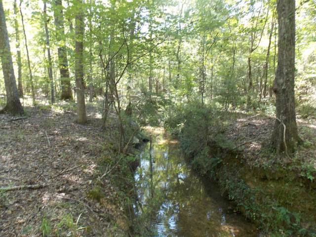 4322 Hwy 220E, Lincolnton, GA 30817 (MLS #445896) :: Shannon Rollings Real Estate