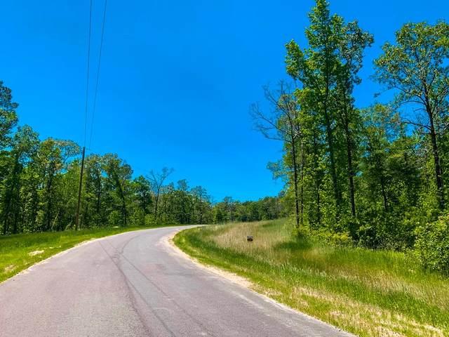 675 Smith Oaks Drive, Appling, GA 30802 (MLS #460765) :: For Sale By Joe | Meybohm Real Estate