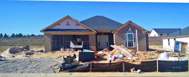 2914 Easton Drive, Hephzibah, GA 30815 (MLS #462153) :: Better Homes and Gardens Real Estate Executive Partners
