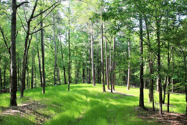 1189 Hesters Ferry Road, Lincolnton, GA 30817 (MLS #469289) :: Melton Realty Partners