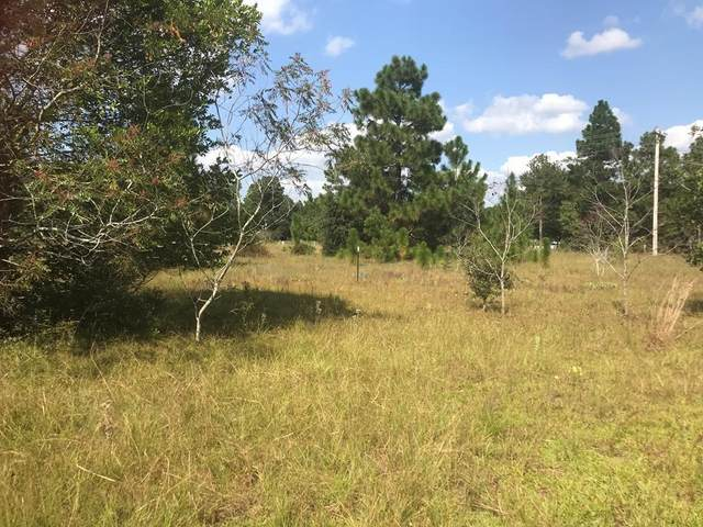 Lot B Piper Road, Aiken, SC 29805 (MLS #475525) :: EXIT Realty Lake Country