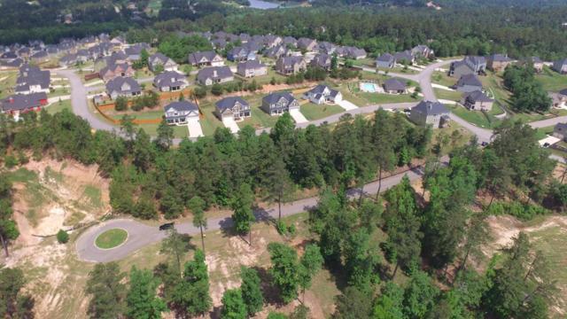 273 Hodges Bay Drive, Aiken, SC 29803 (MLS #440772) :: RE/MAX River Realty