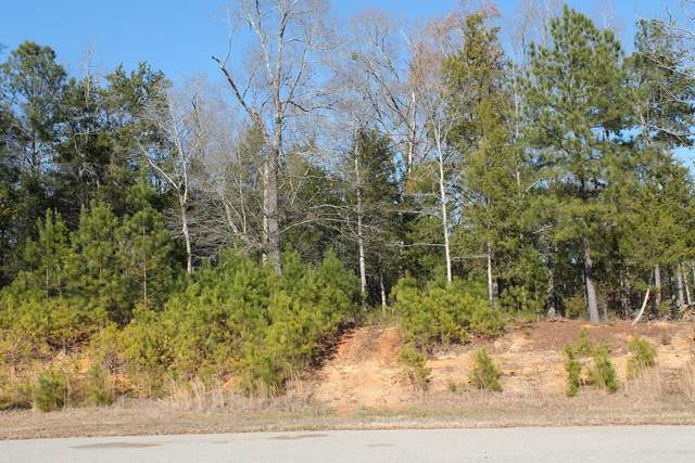 1055 Fleming Lake Court, Lincolnton, GA 30817 (MLS #464257) :: Tonda Booker Real Estate Sales