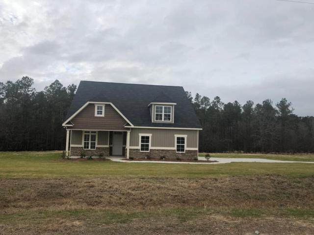 1323 Oakridge Plantation Road, Hephzibah, GA 30815 (MLS #430974) :: Southeastern Residential